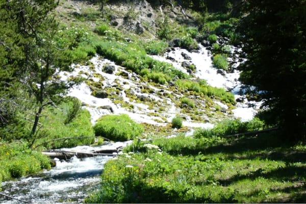 Jackson Hole WY Scenic Horseback Riding Trips