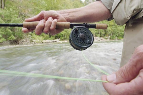 Wyoming Fly Fishing Trips