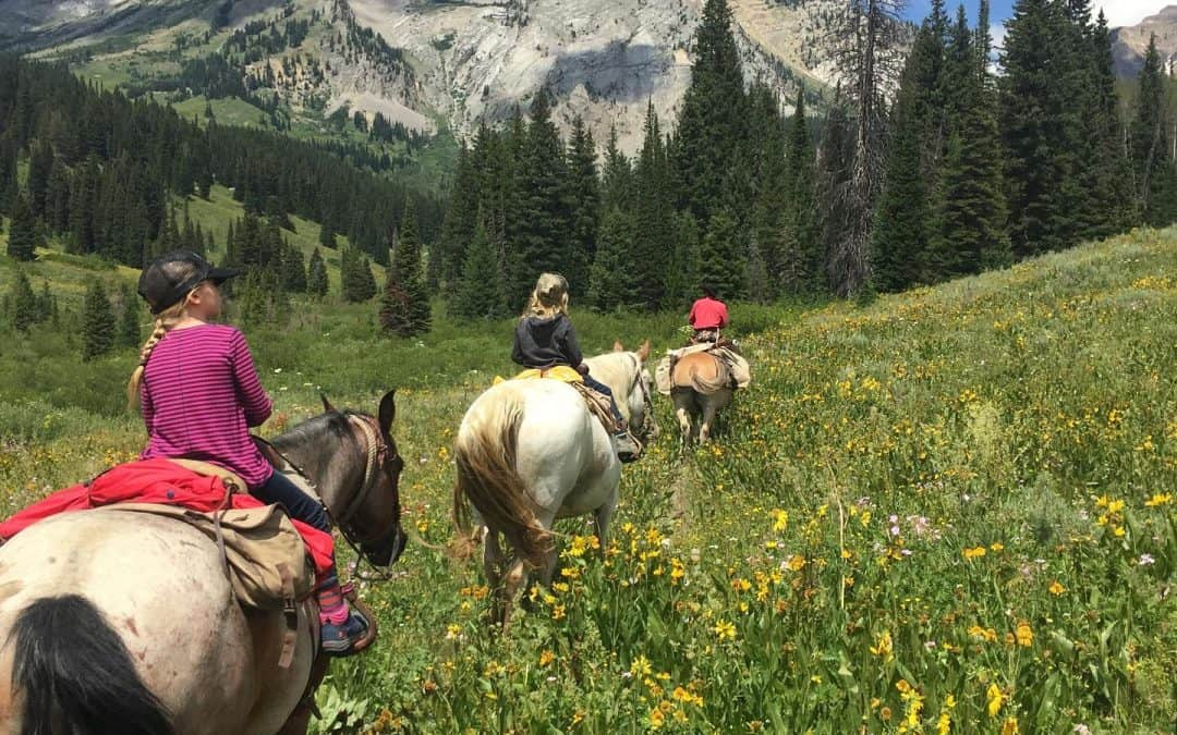 How To Find The Best Horseback Riding in Jackson Hole
