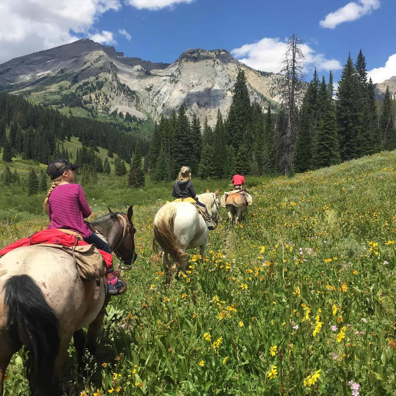 Best Horseback Riding Jackson Hole